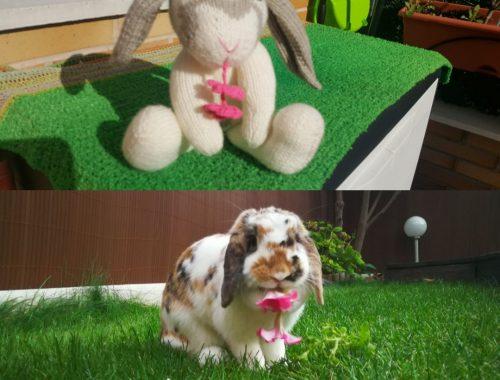 Patrón gratis conejo Teo